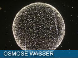 Osmose Wasser
